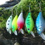 5x ALLBLUE Crankbait, Wobbler (7g/55mm)